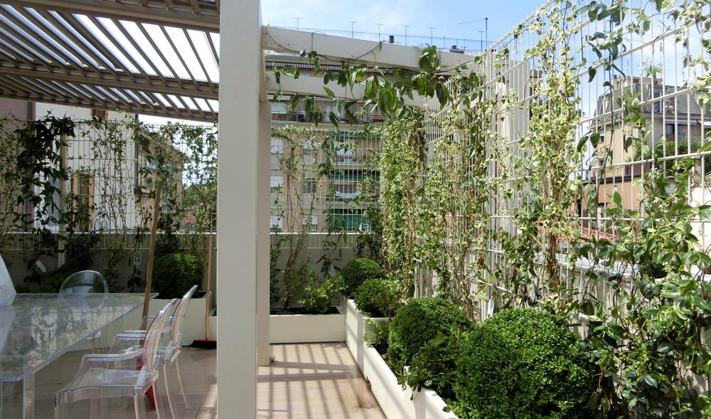 Con il 2018 arriva il bonus verde per giardini e terrazze - Radio ...
