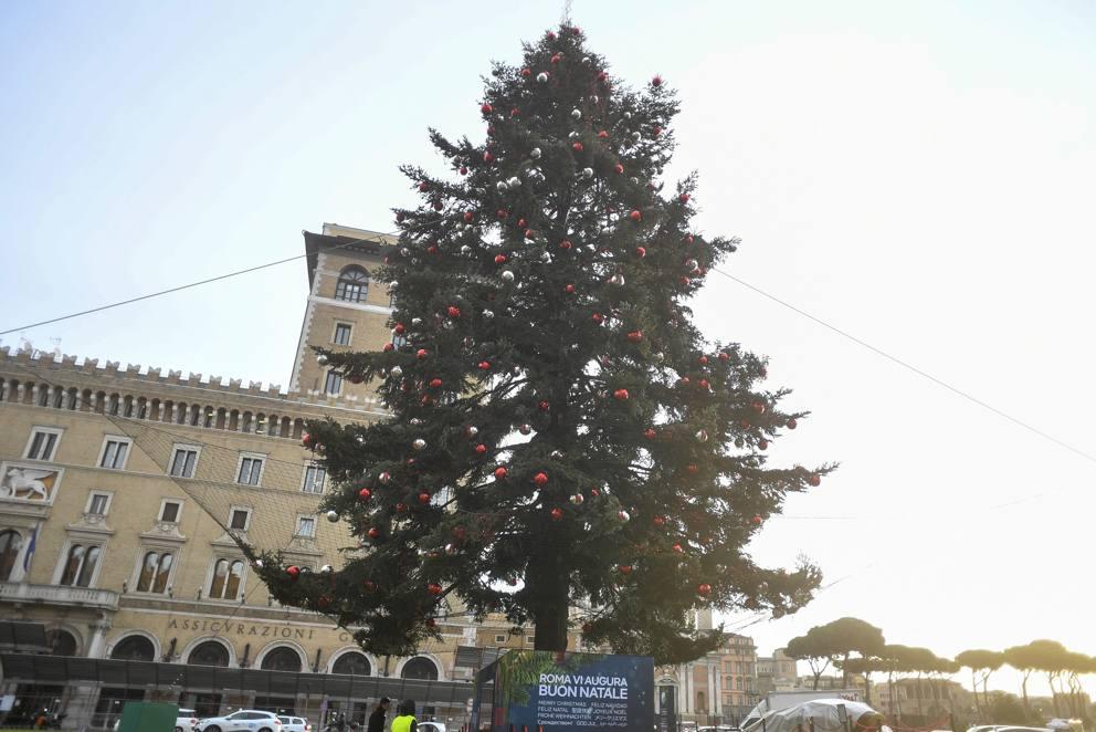 Albero Di Natale Roma 2019.Spelacchio In Rete Per Proteggere Da Caduta Addobbi Radio Colonna